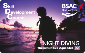 nightdiving