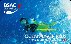 oceandiverplus